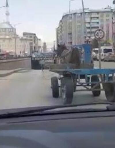 Trafikte dört nala koşan at, çok sayıda araçta hasara neden oldu