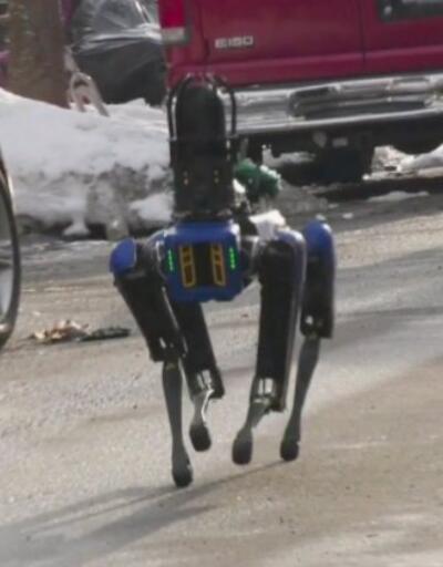 ABD Polisi robot köpekten vazgeçti