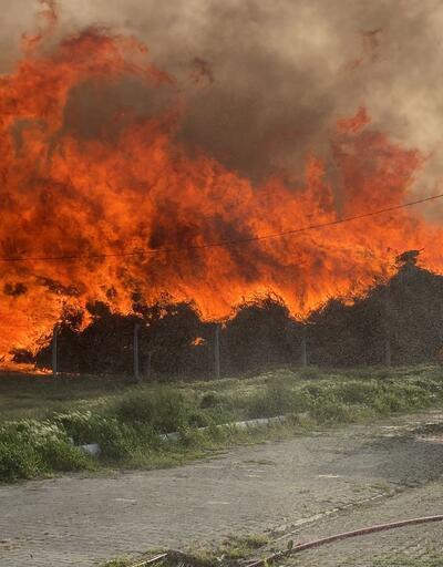 Son dakika haberi: Biyoenerji tesisinde yangın