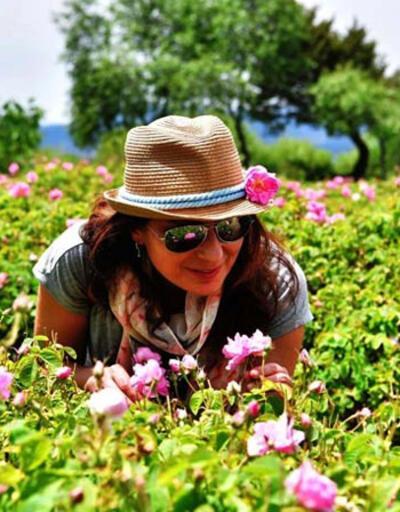 'Türkiye'nin gül bahçesi'nde hasat sezonu