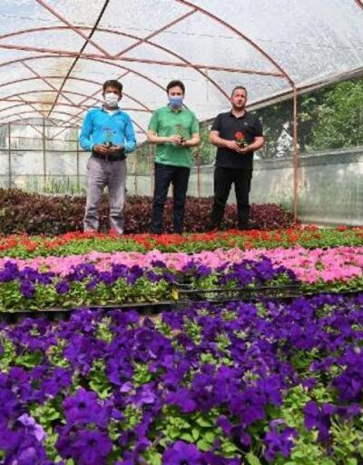 Demre Belediyesi kendi çiçeğini üretiyor