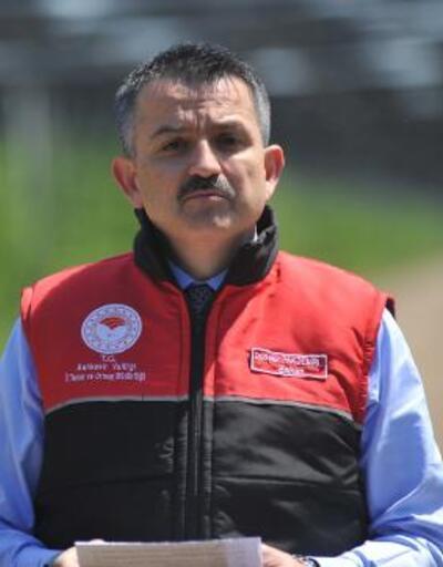 Bakan Pakdemirli'den destek ödemesi açıklaması