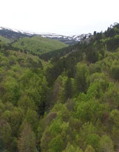 Kütahya ve Uşak'ın doğal sınırını oluşturan Murat Dağı'nda ilkbaharda güzel görüntüler ortaya çıktı