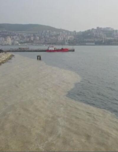 Deniz salyası ekonomiye kazandırılabilir mi?