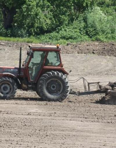 Tarımsal faaliyetler ve hayvancılık, tam kapanmada da hız kesmiyor