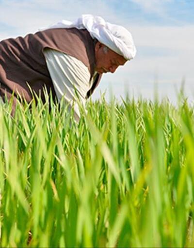 Pakdemirli'den 'Dünya Çiftçiler Günü' mesajı