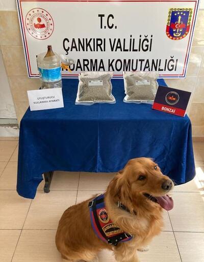 Çankırı'da uyuşturucu operasyonu: 2 gözaltı