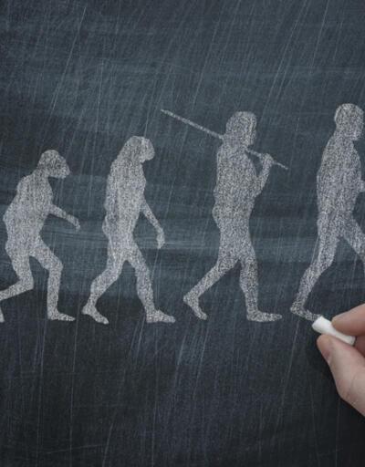 """İngiliz bilim insanı: """"Gelecekte dört ayak üstünde yürüyebiliriz"""""""