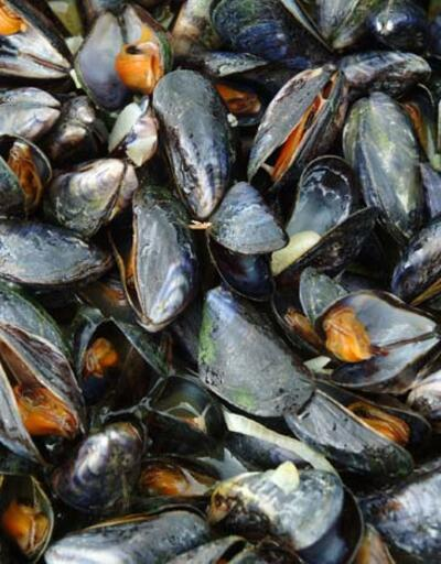 Midye ve dip balığı için korkutan uyarı: Sakın yemeyin, yan etki olabilir!