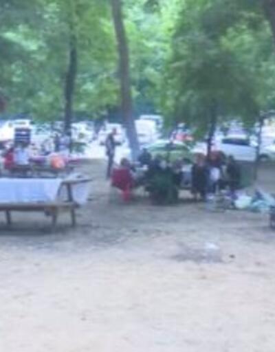 Piknik için ormana koştular