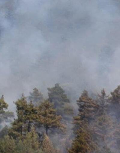 İtalya'nın Sardinya Adası'ndaki yangın nedeniyle 1500'den fazla kişi tahliye edildi
