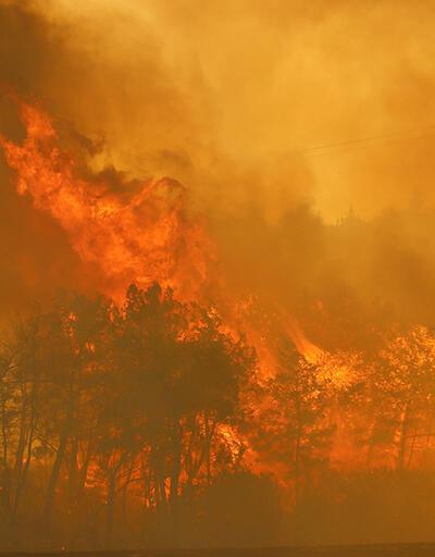 Osmaniye'de korkutan yangın!