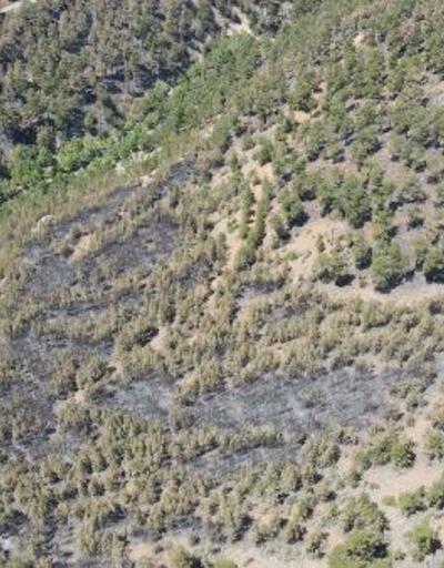 Kayseri'deki orman yangını 3'üncü günde kontrol altında