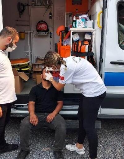 Kartal Belediyesi ekipleri, yangın bölgelerinde yaraları sarmaya devam ediyor
