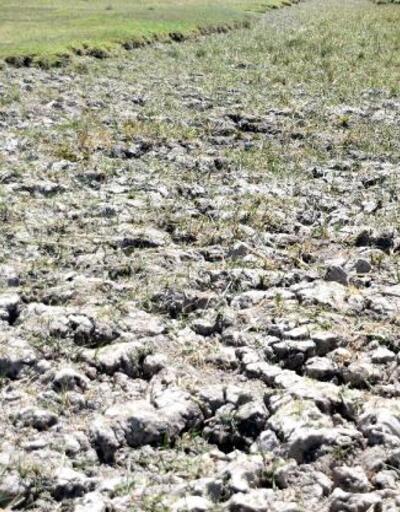 Kayseri'de kuraklık nedeniyle Yay Gölü kurudu
