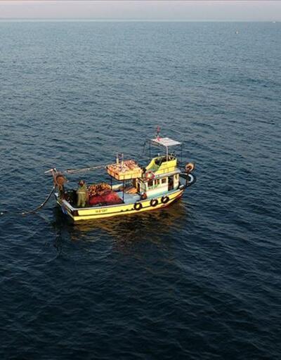 'Marmara'dan balık yenir mi yenmez mi' tartışması: Av sezonu ertelenmeli mi?
