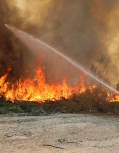 Haluk Levent duyurdu: Acun Ilıcalı yangın bölgesine 5 milyon TL bağışladı