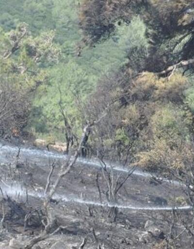 Çanakkale'de ormanlık alanda çıkan yangın kontrol altına alındı