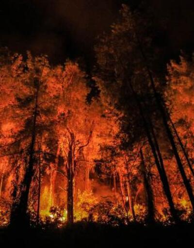 Orman yangınıyla ilgili gözaltındaki 6 kişi serbest