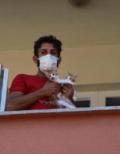 Selde hayatını kaybeden öğretmenin kedilerini belediye kurtardı