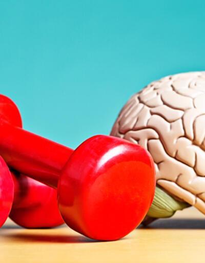 İşte sağlıklı beynin anahtarı!