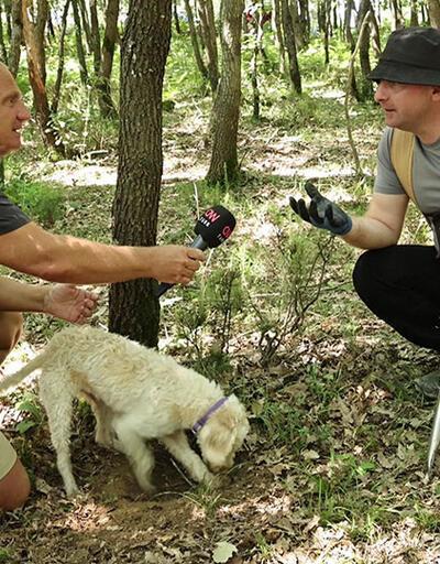 Trüf mantarı avcılığının hikayesi Yeşil Doğa'da ekrana geldi