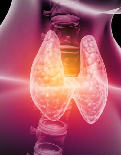 Tiroid bezi az ya da çok çalışırsa vücutta neler oluyor? İşte kritik belirtiler ve tetiklediği hastalıklar