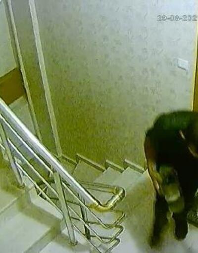 Ayakkabı hırsızlığı kamerada