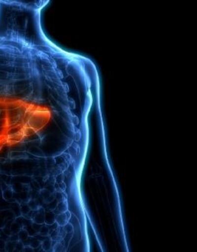 'Karaciğer 1 haftada eski kapasitesine dönebiliyor'