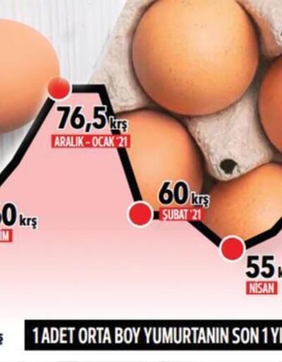 Artan yumurta fiyatları mercek altında