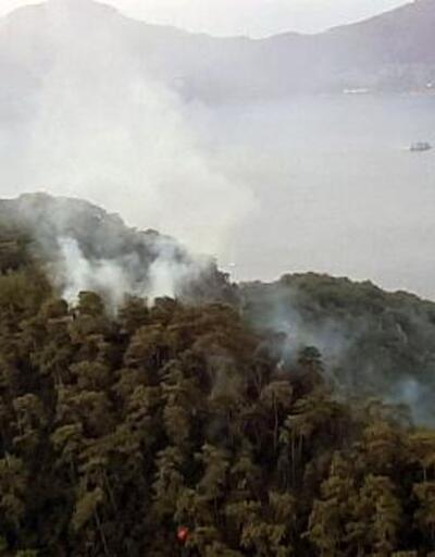 Yıldırım düşmesi sonucu 37 yangın çıktı