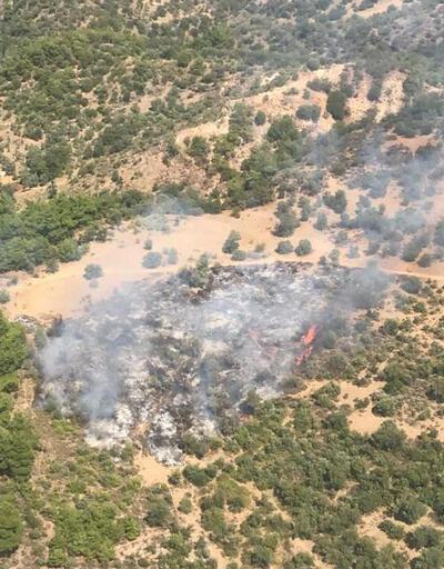 İzmir'in Dikili ilçesinde orman yangını