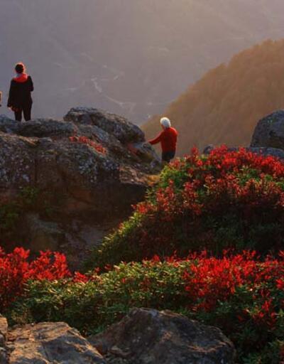 Sis Dağı'nda görsel şölen