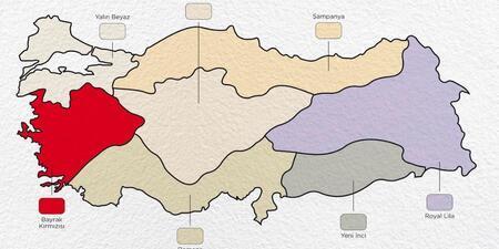 Iste Turkiye Nin Renk Haritasi