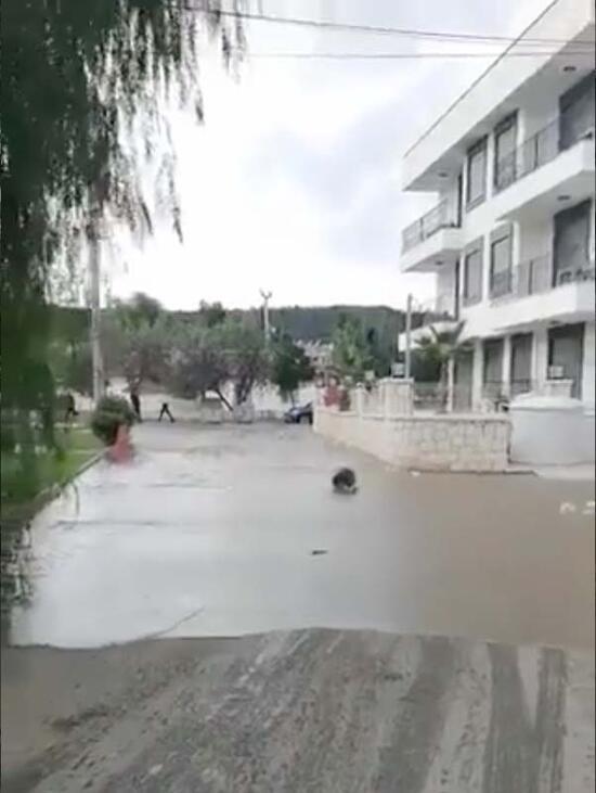 Улиците и улиците бяха наводнени след земетресението