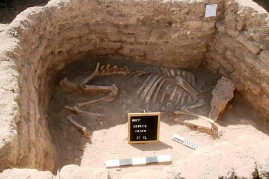 Mısır'da 3 bin yıllık 'kayıp altın şehir' keşfedildi