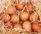 Her gün bir yumurta yerseniz ne olur?