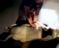 Tayland'da yavru fil kalp masajıyla hayata döndü