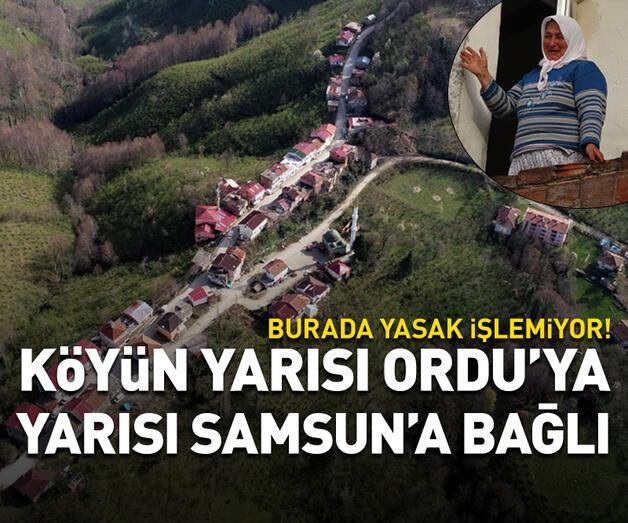 Son dakika: Köyün yarısı Ordu'ya yarısı Samsun'a bağlı...