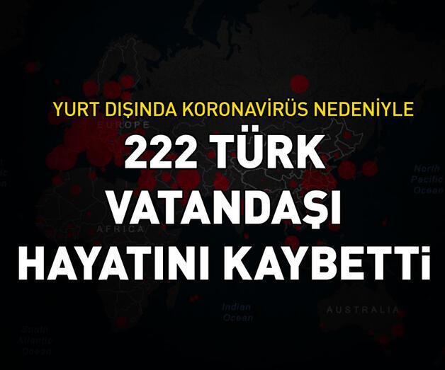 Son dakika: Yurt dışında 222 Türk vatandaşı hayatını kaybetti
