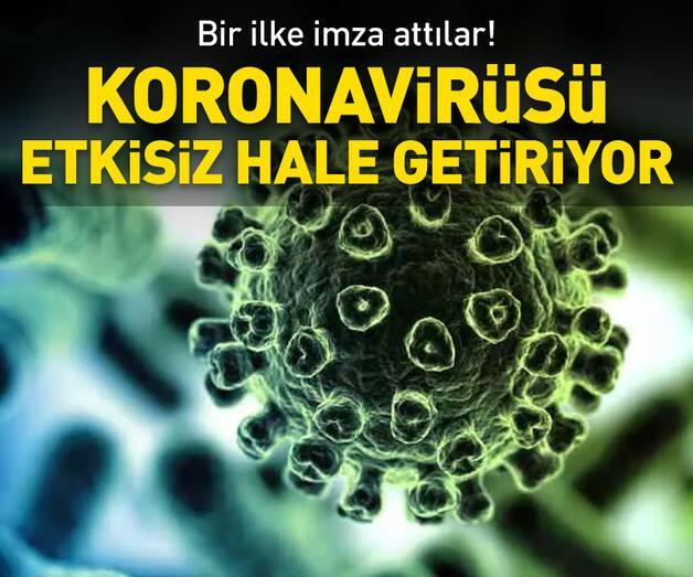 Son dakika: Koronavirüsü etkisiz hale getiriyor