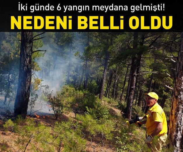 Son dakika: Yangınların nedeni belli oldu