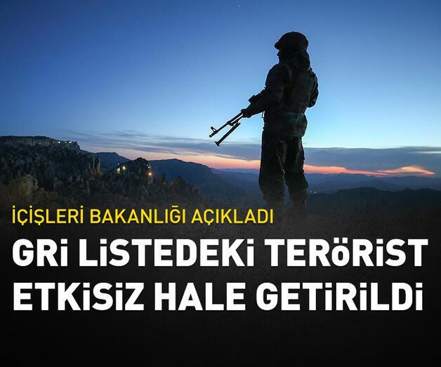 Son dakika: Gri Liste'deki terörist Bitlis'te etkisiz hale getirildi