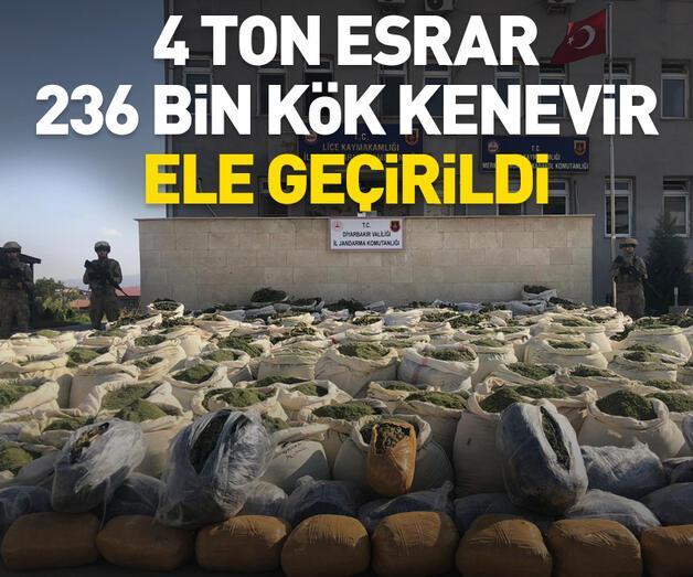 Son dakika: 4 ton esrar, 236 bin kök kenevir ele geçirildi