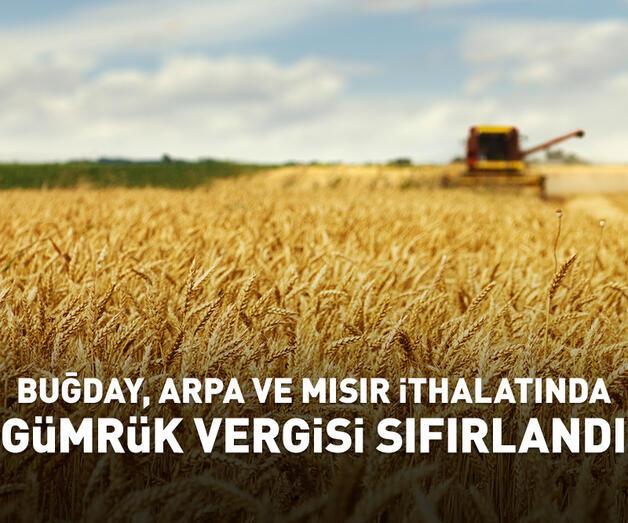 Son dakika: Buğday, arpa ve mısırda gümrük vergisi sıfırlandı