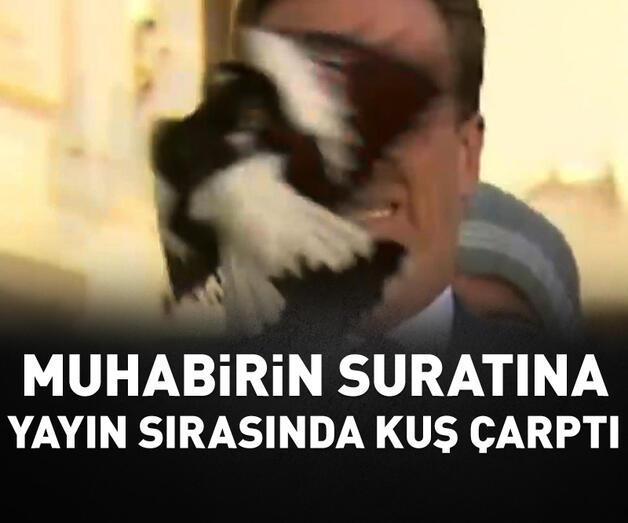 Son dakika: Muhabirin suratına yayın sırasında kuş çarptı