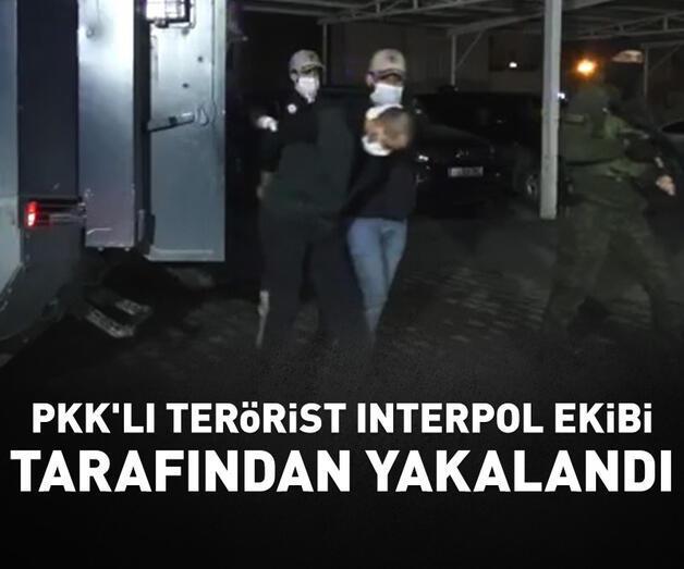 Son dakika: Interpol'ün Irak'ta yakaladığı PKK'lı Türkiye'ye getirildi