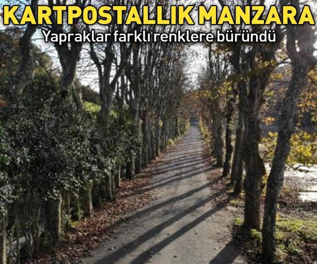 Son dakika: İstanbul'dan kartpostallık sonbahar manzaraları