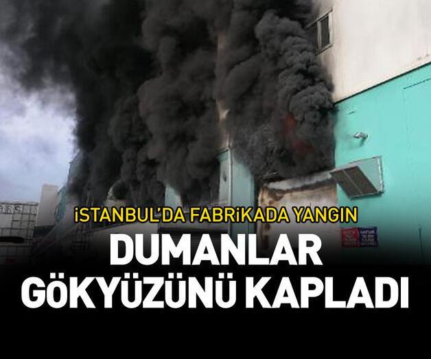 Son dakika: İstanbul'da fabrikada yangın