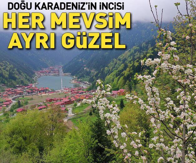 Son dakika: Dünyaca ünlü turizm merkezi Uzungöl'den ilkbahar manzaraları